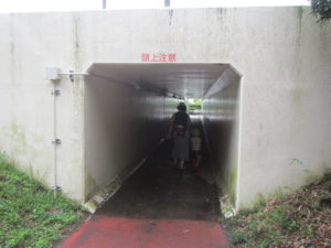 宮崎旅行 サンビーチ一ツ葉 途中のトンネル